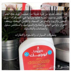 Logic All-inclusive Home & Auto Cleaner - 1L